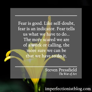 """Fear is good. Like self-doubt, fear is an indicator. Fear tells us what we have to do... The more scared we are of a work or calling, the more sure we can be that we have to do it."" -Steven Pressfield (The War of Art)"